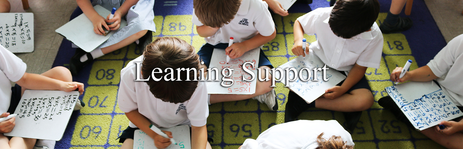 Learning Support Header