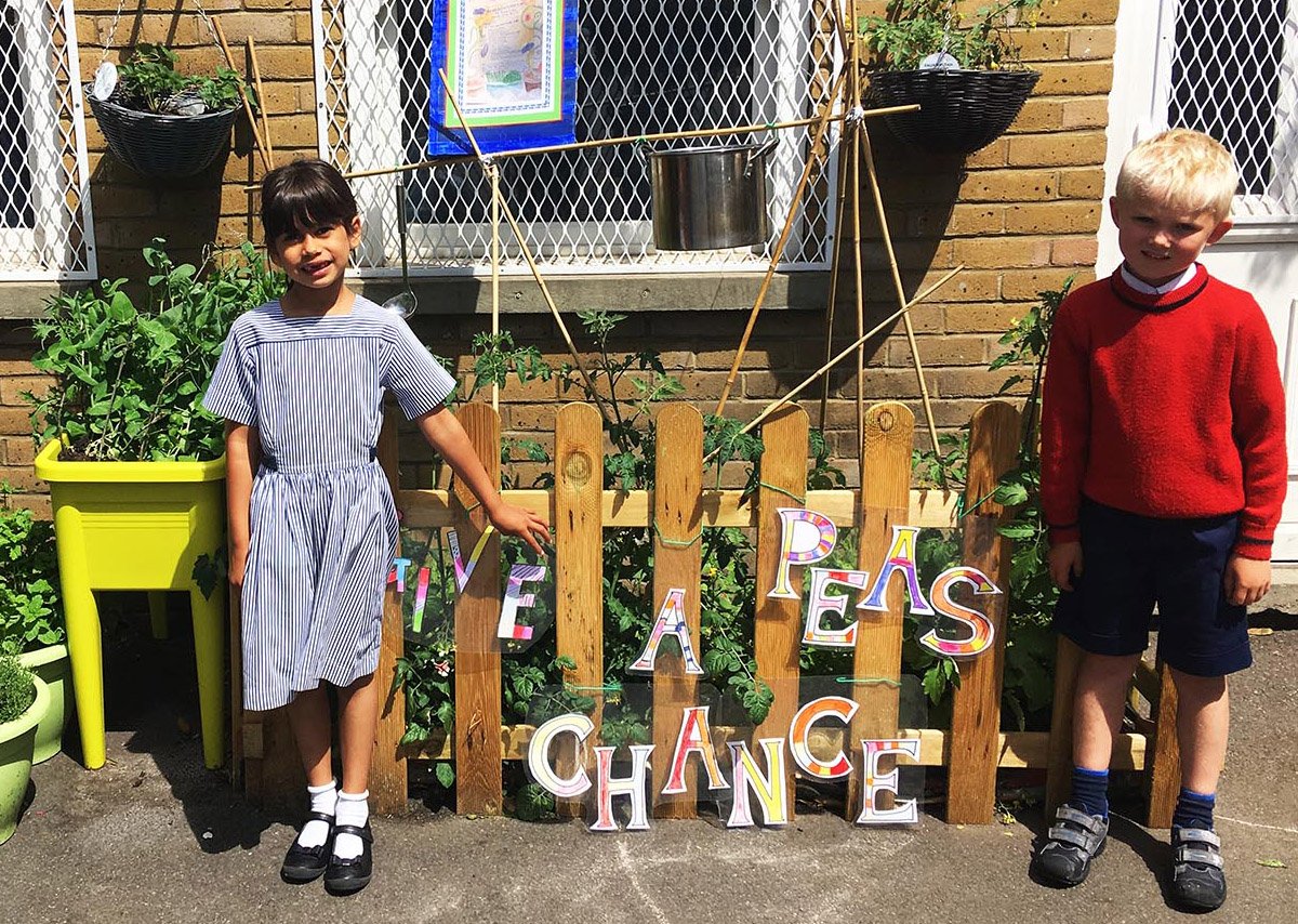 School Council Garden pic