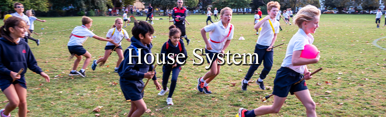 House System Header New 2